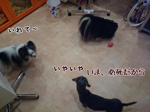 d0269898_18053601.jpg