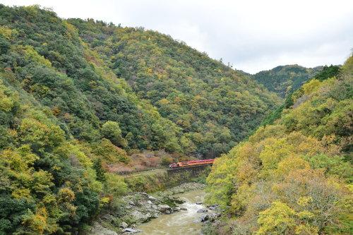 嵯峨野鉄道トロッコ列車_d0285540_13472312.jpg
