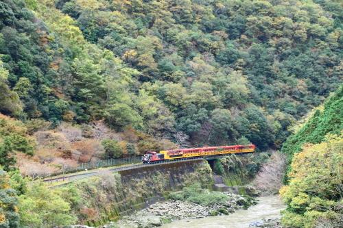 嵯峨野鉄道トロッコ列車_d0285540_13473924.jpg