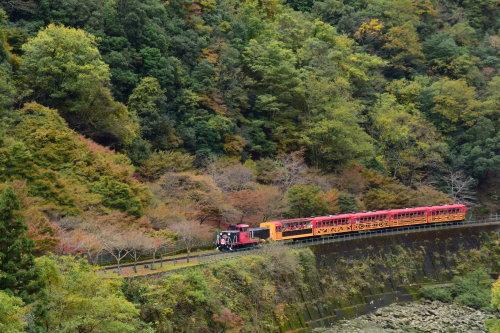 嵯峨野鉄道トロッコ列車_d0285540_13474971.jpg