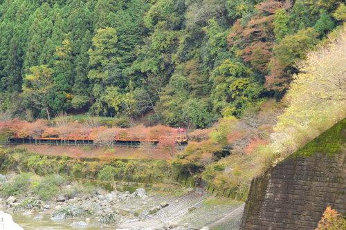 嵯峨野鉄道トロッコ列車_d0285540_13475824.jpg