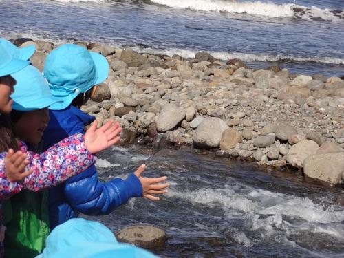 鮭の川登り見学&ミニ遠足に行ってきました_d0166047_10503189.jpg