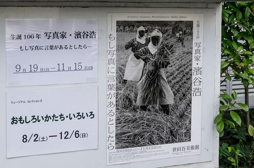 世田谷美術館へ_c0002682_2065250.jpg