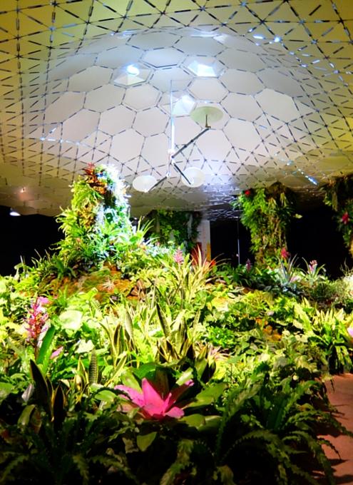 世界初となるNYの地下公園計画、実験室『ロウライン・ラボ』(Lowline Lab)を一般公開中!!!_b0007805_6322344.jpg