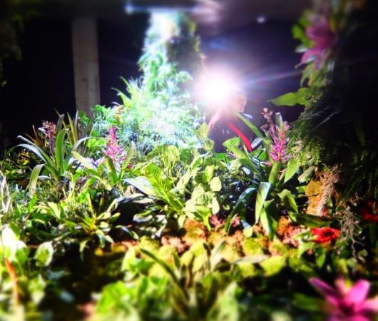 世界初となるNYの地下公園計画、実験室『ロウライン・ラボ』(Lowline Lab)を一般公開中!!!_b0007805_73043.jpg