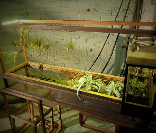世界初となるNYの地下公園計画、実験室『ロウライン・ラボ』(Lowline Lab)を一般公開中!!!_b0007805_758597.jpg