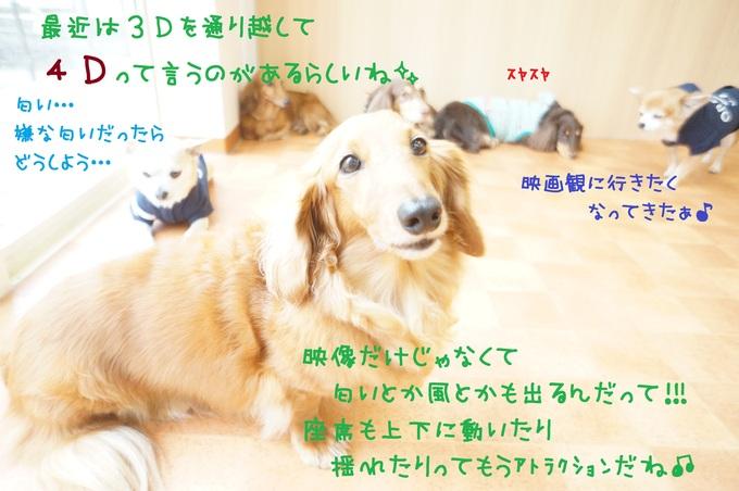 d0220513_1421251.jpg