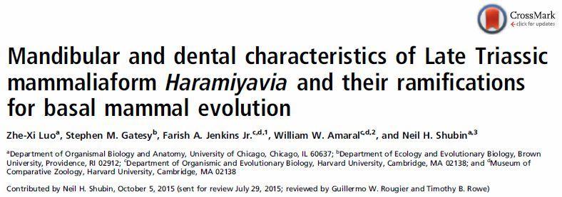 ハイテク機器で再調査された「原始哺乳類」は「哺乳類以前」だった_c0025115_19462775.jpg