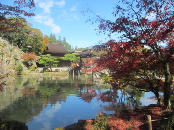 11月10日(火)元気クラブのみなさんと秋の紅葉ウォーキング_d0010630_09550751.jpg