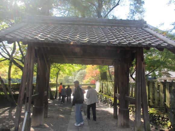 11月10日(火)元気クラブのみなさんと秋の紅葉ウォーキング_d0010630_09562982.jpg