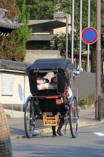 インクライン~東山 お散歩_c0134734_10240819.jpg