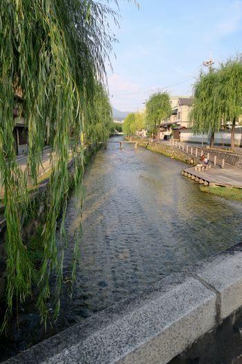 インクライン~東山 お散歩_c0134734_10263140.jpg