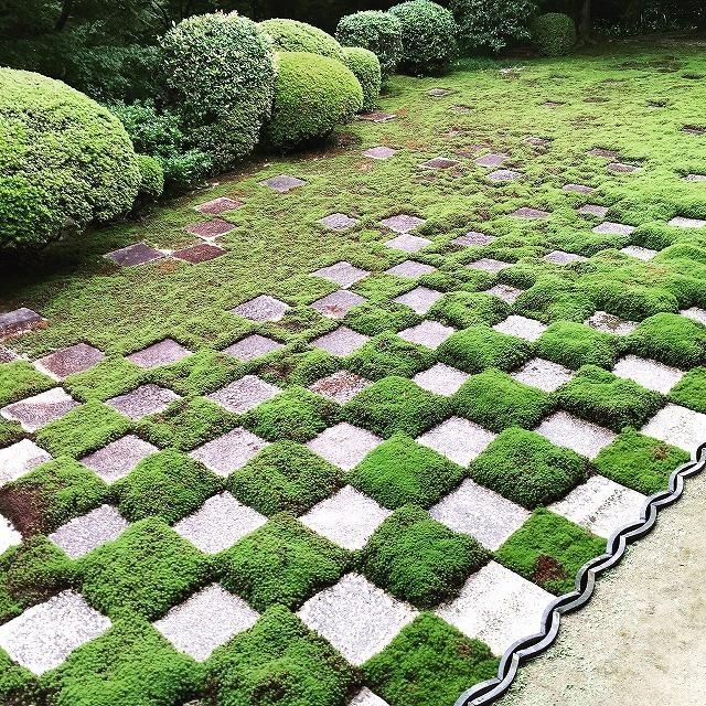 京都での仕事、観光楽しみました。_c0240541_16472596.jpg