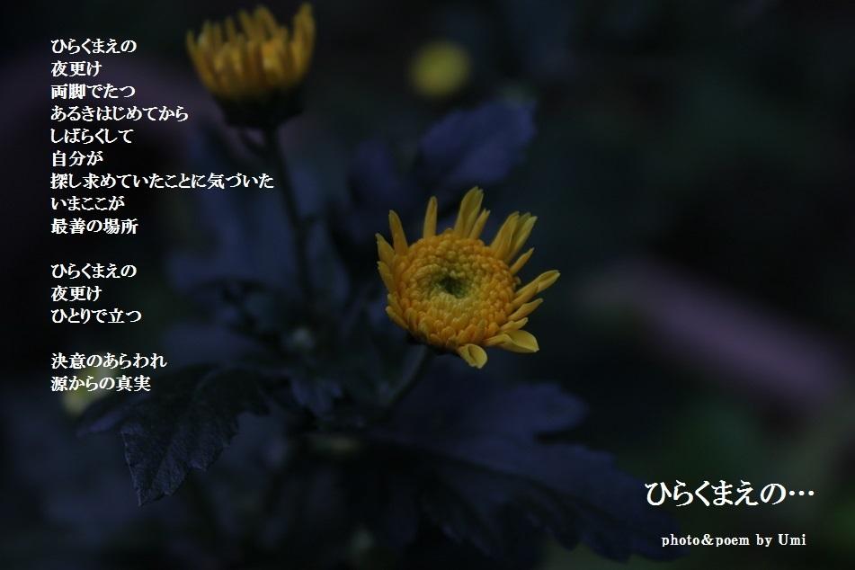 f0351844_21541112.jpg