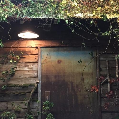 「庭マルシェⅢ」終了しました。_e0060555_00171600.jpg