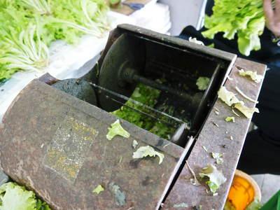 水耕栽培 ほうれん草、サラダレタス、水菜!収穫と出荷の様子を取材してきました!!_a0254656_187740.jpg