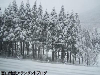もうすぐ、冬がやってくるぅ_a0243562_15542932.jpg