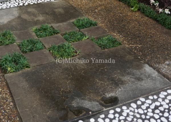 タマリュウの使い方。日陰の植栽。_a0139105_9321072.jpg