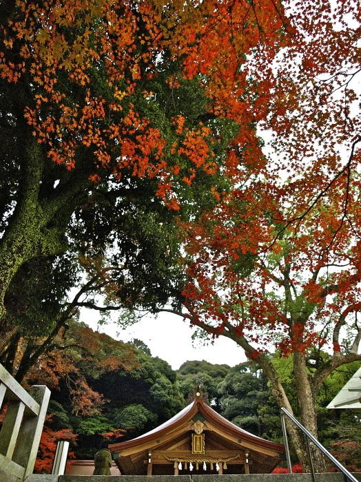 竈門神社(かまど)_f0315034_15413771.jpg