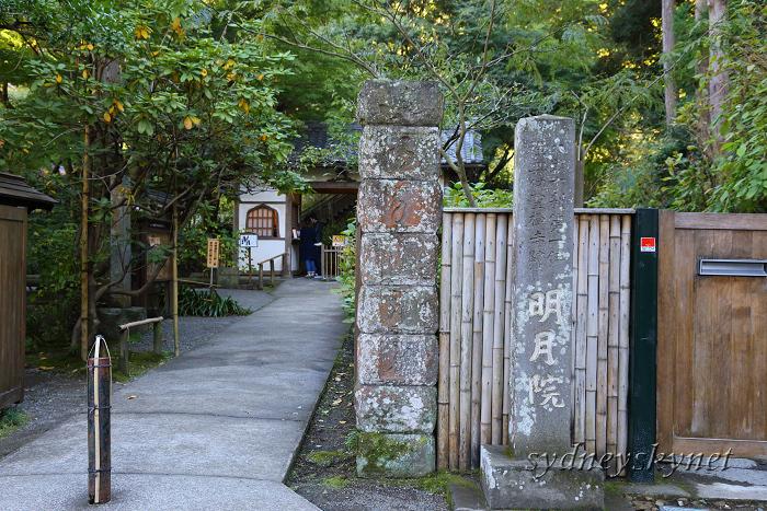 鎌倉 3 ~明月院~_f0084337_20585205.jpg