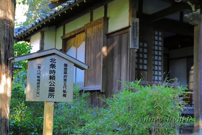 鎌倉 3 ~明月院~_f0084337_20585224.jpg