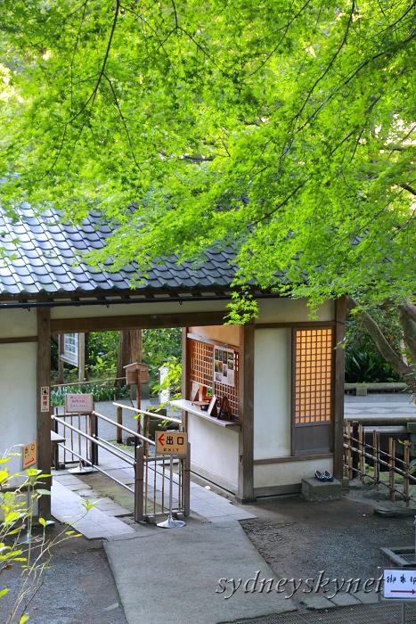 鎌倉 3 ~明月院~_f0084337_20585294.jpg