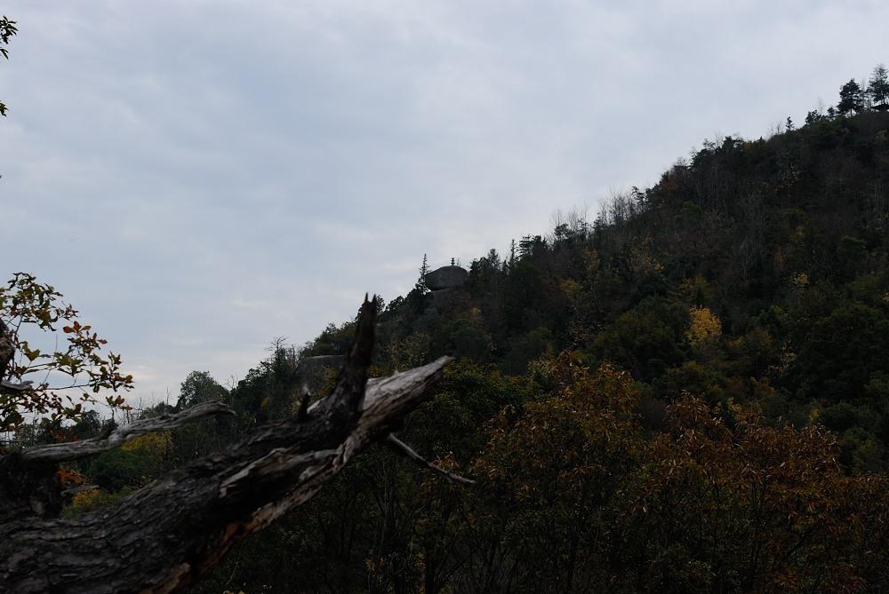 福山城跡(福山302m)トレッキング♪_f0224648_09510842.jpg