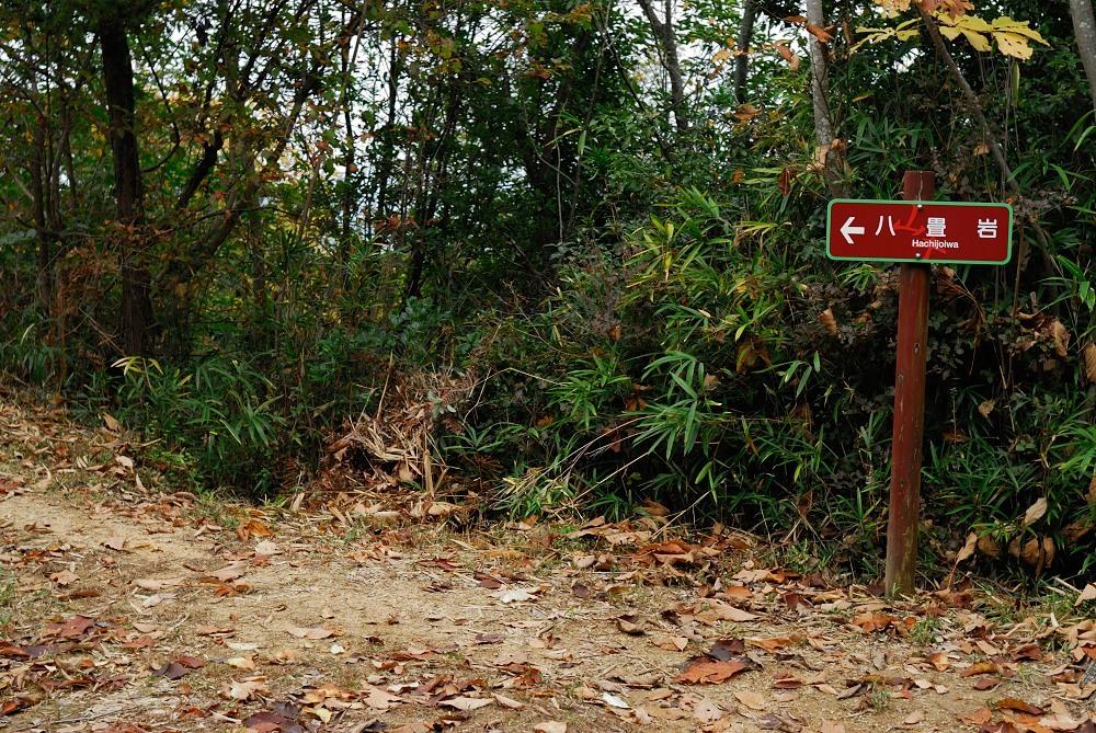 福山城跡(福山302m)トレッキング♪_f0224648_09512830.jpg