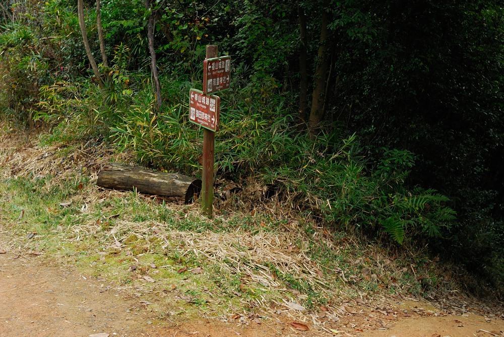 福山城跡(福山302m)トレッキング♪_f0224648_09521080.jpg