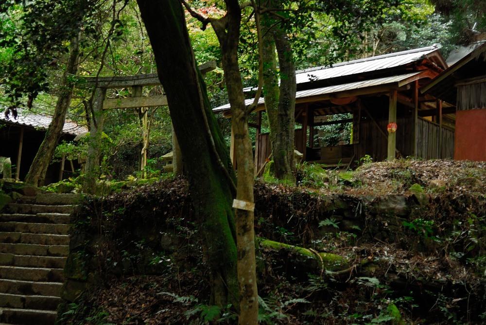 福山城跡(福山302m)トレッキング♪_f0224648_09523510.jpg