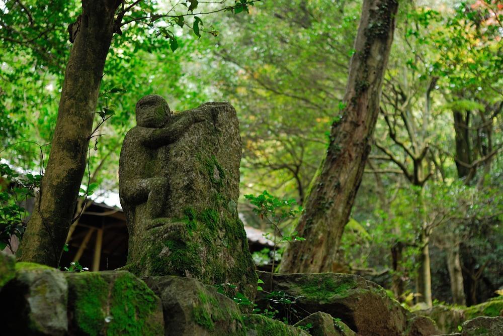 福山城跡(福山302m)トレッキング♪_f0224648_09524920.jpg