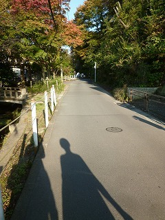 KAMAKURAその1 長谷寺&ぶらり北鎌倉♪_a0165160_14090748.jpg