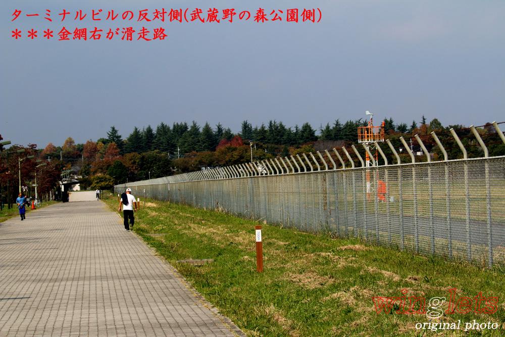 '15年 調布飛行場レポート・・・CUK/JA33CA_f0352866_2050465.jpg