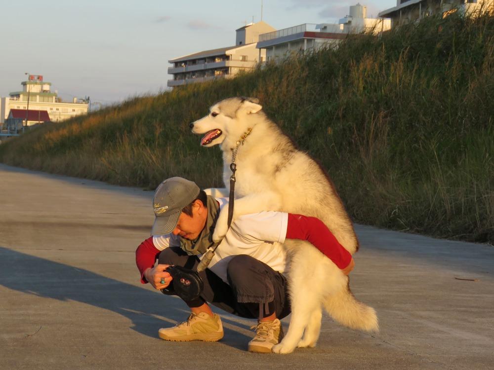 やっぱりおんぶ犬 (≧∇≦)_c0049299_22304227.jpg