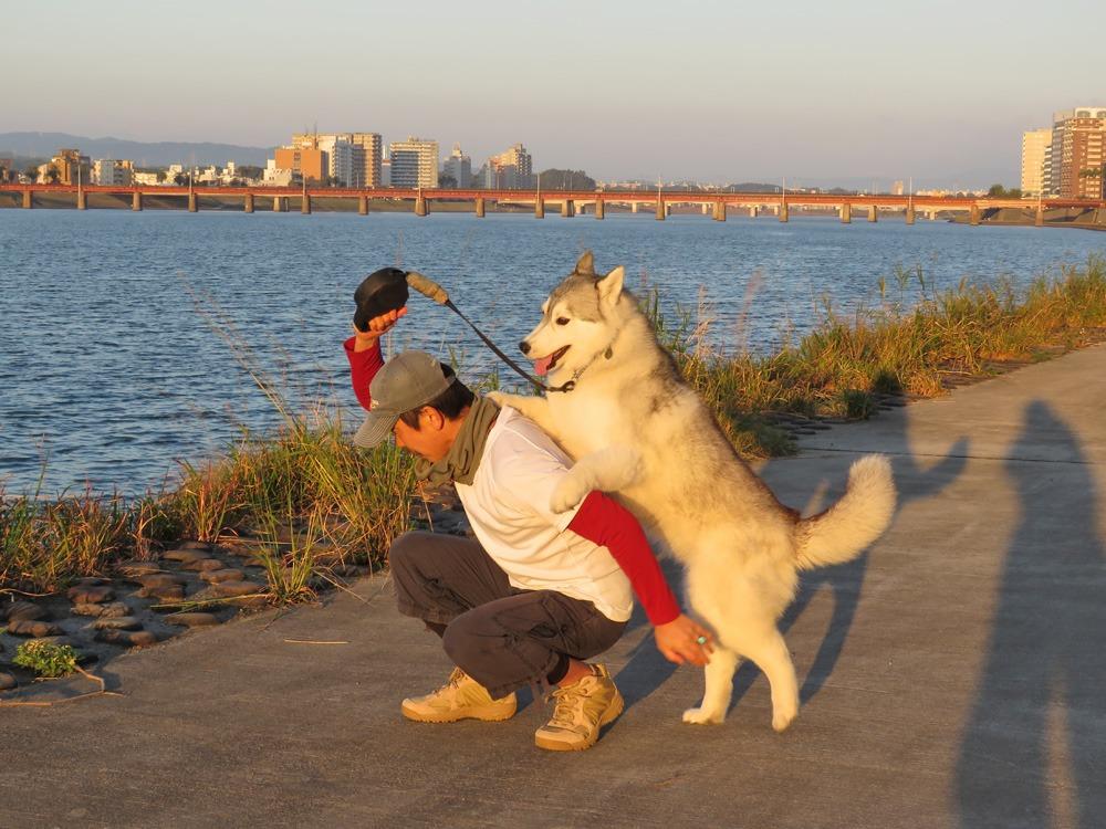 やっぱりおんぶ犬 (≧∇≦)_c0049299_22321146.jpg