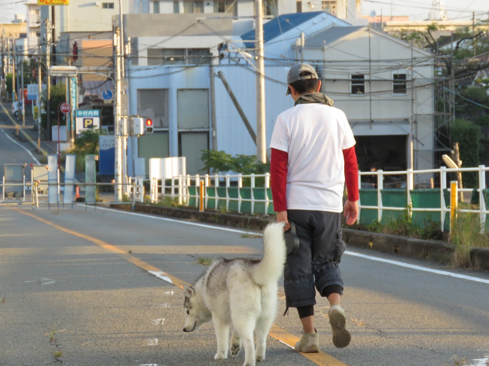 やっぱりおんぶ犬 (≧∇≦)_c0049299_22325047.jpg