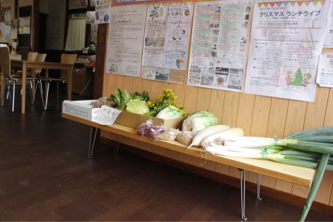 野菜が入荷〜(・∀・)_f0309404_11094996.jpg