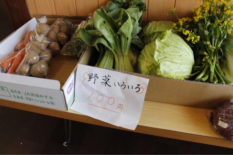 野菜が入荷〜(・∀・)_f0309404_11095050.jpg