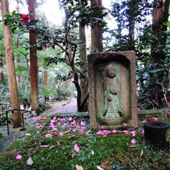 東慶寺の野葡萄_c0195909_13243815.jpg