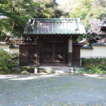 東慶寺の野葡萄_c0195909_13245184.jpg