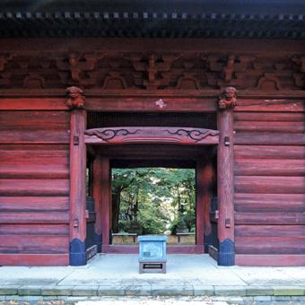 東慶寺の野葡萄_c0195909_13245697.jpg