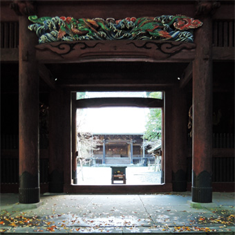 東慶寺の野葡萄_c0195909_1325264.jpg