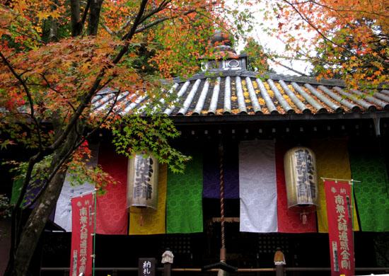 紅葉だより25 今熊野観音寺_e0048413_20283747.jpg