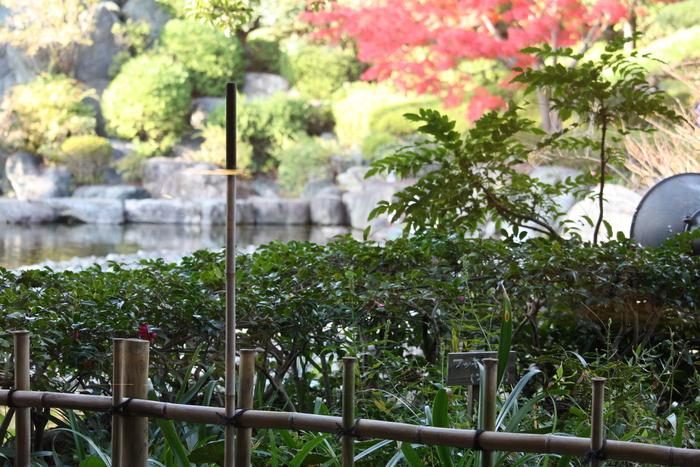 足立区/花畑の桜花亭の紅葉?_a0214329_19252645.jpg