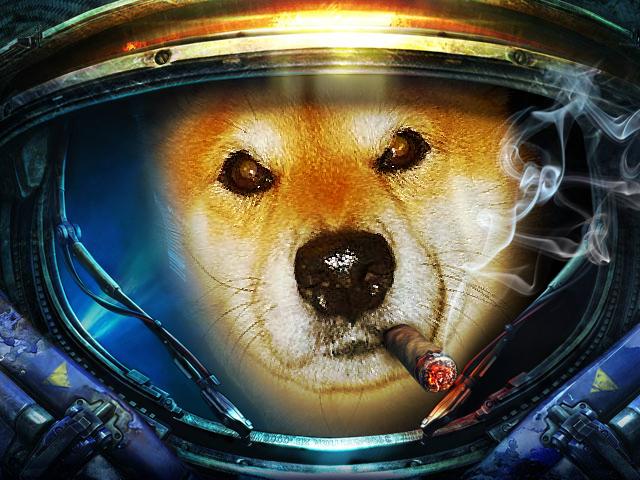 宇宙遊泳_b0314043_20083042.jpg