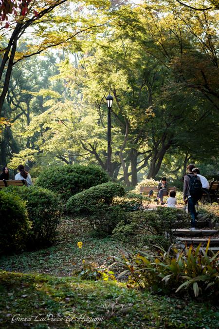 東京の風景 日比谷公園_b0133053_1263626.jpg