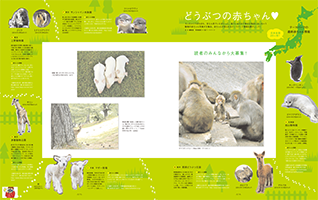 最新号 カメラ日和vol.64 「家族写真」発売!_b0043961_22203980.png