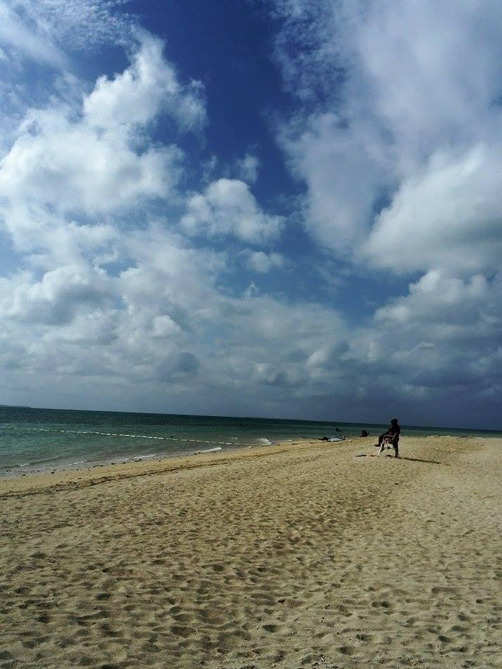PECO Buccho と 石垣島~♪_d0197762_12495994.jpg