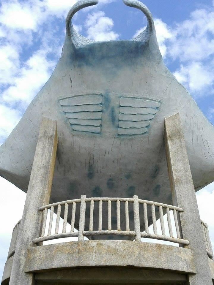 PECO Buccho と 石垣島~♪_d0197762_1258343.jpg