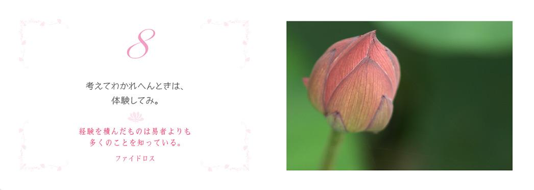 f0355165_9302675.jpg